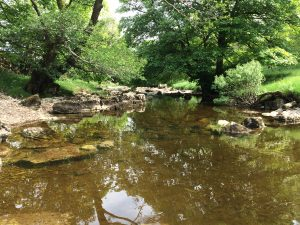 The river Wharfe near Yockenthwaite
